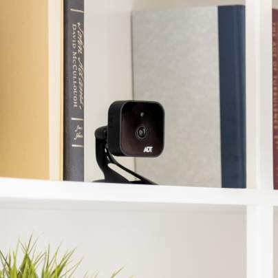 Flint indoor security camera